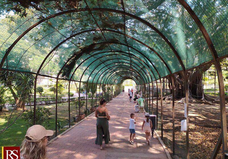Palermo, i Giardini di Palazzo d'Orleans aperti anche a ferragosto